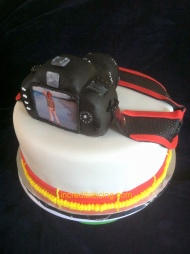 #210- Canon Cake Back