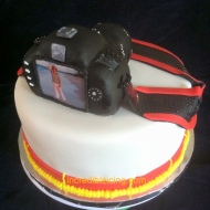 #210- Canon Cake Back