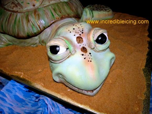 #414- Turtle