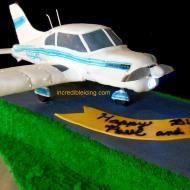 #246- Cherokee Piper Cake