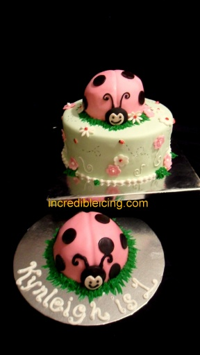 #225- Little Ladybug and Smash Cake
